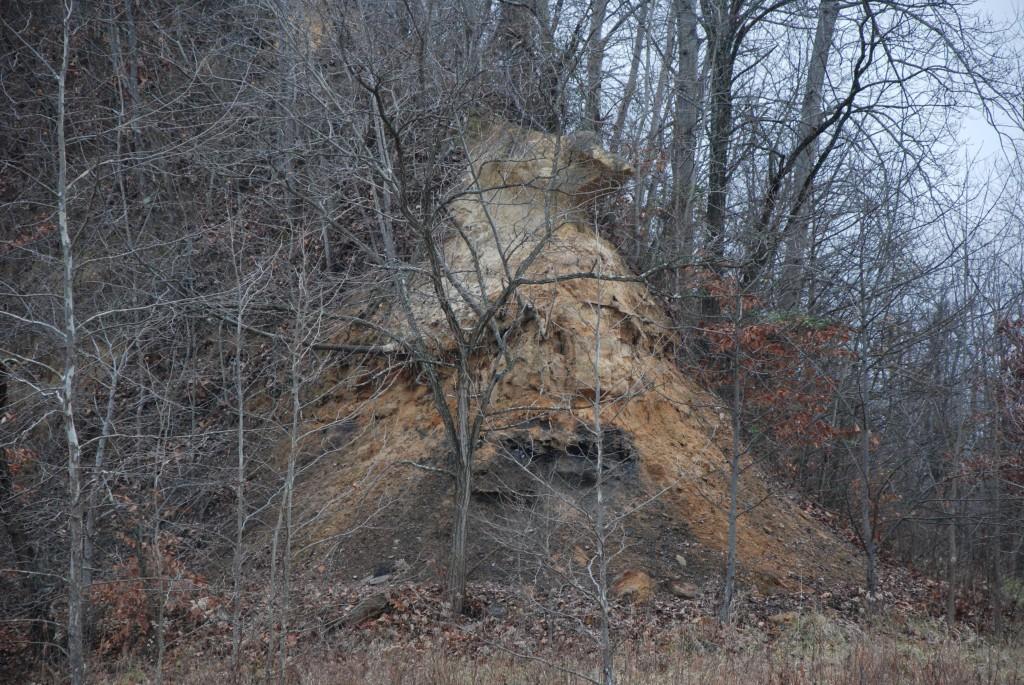 nature preserve 2